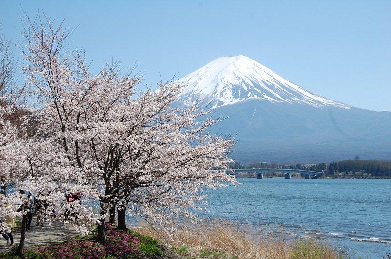 ทะเลสาบคาวากูจิโกะ(Lake Kawaguchiko)