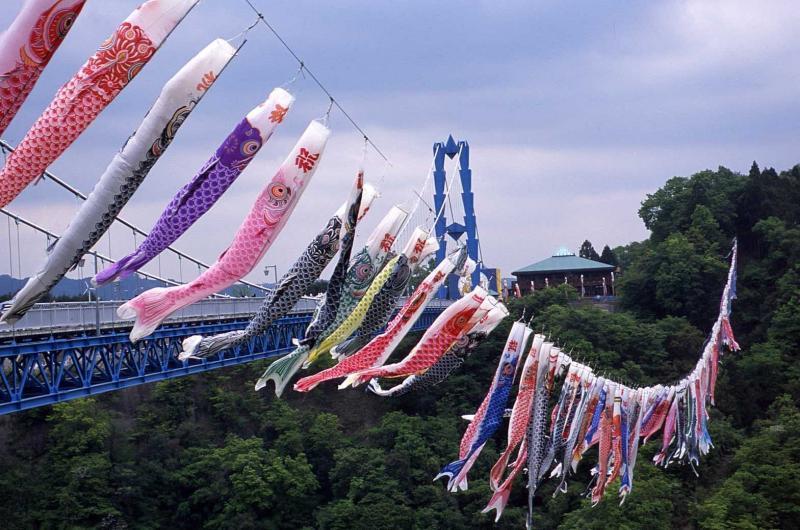 เทศกาลโคอิโนโบริ ณ สะพานแขวนริวจิน