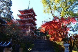 วัดจิคุรินจิ (Chikurinji Temple) ท่องเที่ยวญี่ปุ่น