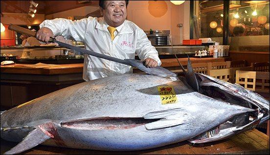 5 ปลารสชาติดี ที่คนญี่ปุ่นชื่นชอบ