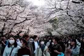 ญี่ปุ่นติดโควิดวันเดียวเกือบ 5,000 ราย จ่อประกาศภาวะฉุกเฉินอีก 3 จว