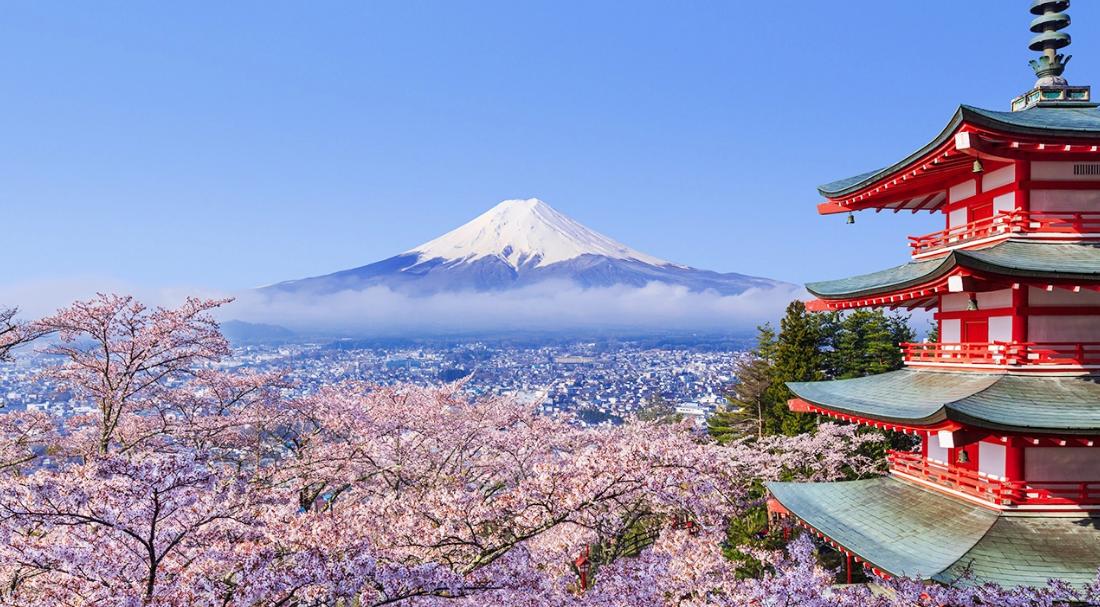 งดเที่ยวญี่ปุ่น